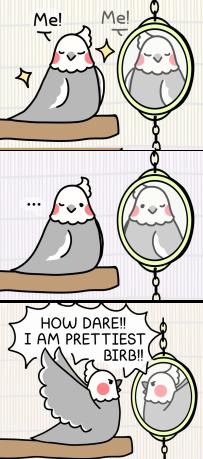 mirror mirror twt 2